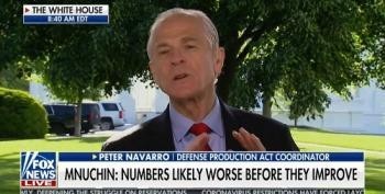 Peter Navarro Rips Sunday Show Hosts For 'Great Depression Pity Party'
