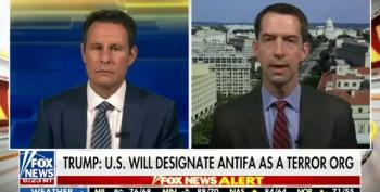 Sen. Tom Cotton Says Send In The 101st Airborne Division To Put Down 'Antifa Terrorists'