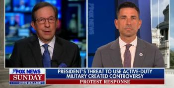 Chris Wallace Accuses Chad Wolf Of 'Setting Up A Strawman' With Defense Of Trump's Use Of Active Military