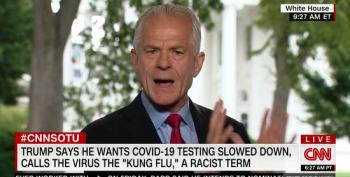 Peter Navarro Calls Trump's Remarks On Slowing Down Testing 'Tongue In Cheek'
