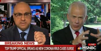 Peter Navarro Pushes Conspiracy Theories And Attacks Dr. Fauci In Bonkers MSNBC Interview