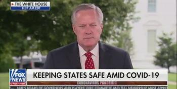 Mark Meadows Repeats Trump's '99% Of Covid Cases Harmless' Lie