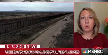 Armed Mexicans Were Smuggled Into U.S. To Guard Trump's Border Wall