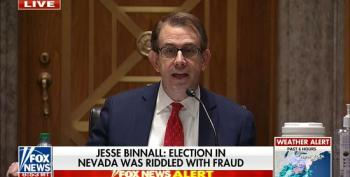 GOP Witness Whines About Imaginary Voter Fraud In Nevada During Ron Johnson's Hearing