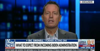 Trump Toadie Richard Grenell Says Susan Rice 'Lacks Experience'