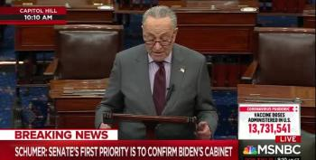 Sen. Schumer Had Quite The Freudian Slip On The Senate Floor
