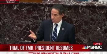 Rep. Raskin Requests Witness Testimony In Impeachment Trial