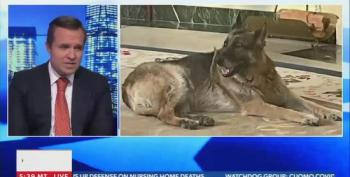 Newsmax Attacks Biden's Dog As Dirty And 'Unlike A Presidential Dog'