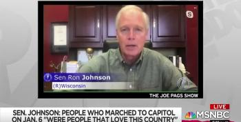 Rachel Maddow Calls Out Ron Johnson's Overt Racism