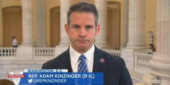 Rep. Kinzinger Blasts Republicans