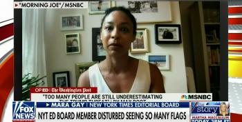 Kayleigh McEnany Ignores Her Own Clip To Freak Out Over Flag