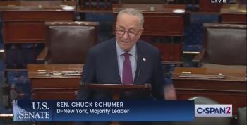 Senate Majority Leader Schumer Rails Against Trump's 'Big Lie'