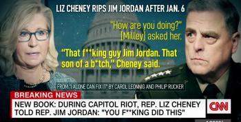 'You F*cking Did This!' Screams Liz Cheney At Jim Jordan, According To Book