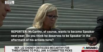 Liz Cheney Makes It Clear: Kevin McCarthy Should Not Be Speaker