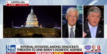 Hannity And Gingrich Just Want The Country To Burn