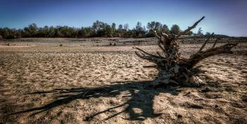 Drought Threatens Cattle, Farms, Fisheries