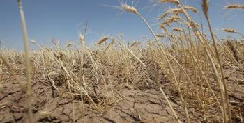 UN Report Sees $1.45 Tn Global Warming Cost: Media