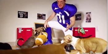 Stephen Colbert's Stirring Half Time Speech At The Puppy Bowl