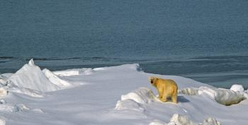 Five Key Takeaways From The Frightening IPCC Climate Change Report