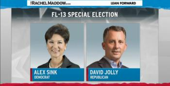 Alex Sink Loses Special FL-13 Election
