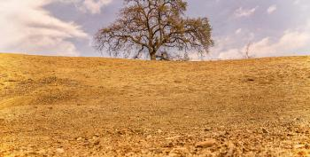 No Snow In California Mountains — Dry Summer Coming