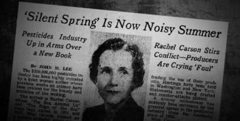 How One Brave Woman Sparked The Environmental Movement