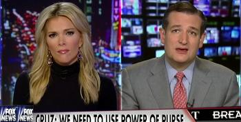 Ted Cruz & Megyn Kelly Sitting In A Tree Plotting A Government Shutdown