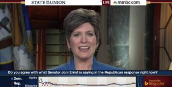 Joni Ernst Talks About That Time Trickle-Down Economics Spilled On Her Shoes