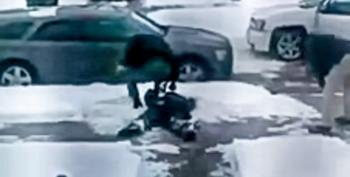 Mich. Cops Caught On Video Kicking And Beating Handcuffed Man