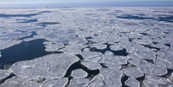 More Bad News From Antarctica: Study Shows Increase In Ice Shelf Thinning