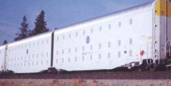 The Endlessly Recurring 'FEMA Railcars With Shackles' Story
