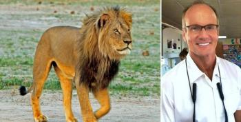 Minnesota Dentist Who Killed Cecil The Lion Gets Mauled On The Internet