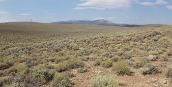 Nevada Ranchers Who Insist There's No Drought Collecting Drought Relief Funds