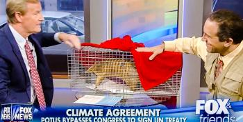 WTF: Fox Says This Stuffed Armadillo Means Global Warming 'Is Nothing To Worry About'