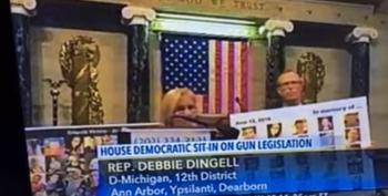 Rep. Debbie Dingell At The Sit-in: 'I Know What It's Like To Have A Gun Pointed At You'