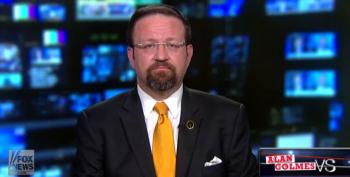 Abuse Of Power: Trump NSA Goon Gorka Threatens Critic (AUDIO)