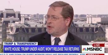 Grover Norquist: 'Democrats And Grasshoppers Don't Get To Vote On Tax Reform'