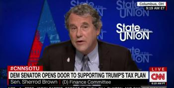 Sen. Sherrod Brown: Trump Can Work With Dems On Taxes Or Throw In With McConnell And Billionaires