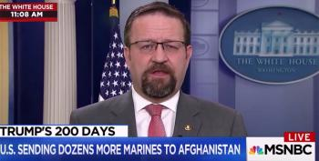 Sebastian Gorka Unwittingly Verifies Michael Wolff's Access To White House