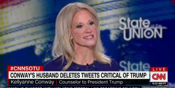 Kellyanne Conway Accuses CNN's Bash Of Sexism For Asking About Husband's Anti-Trump Tweets
