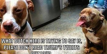 Open Thread - Even The Dogs Don't Want To Hear Trump