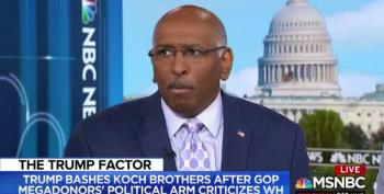 Michael Steele Worries 'It Doesn't Take Much' To Lose The House In 2018