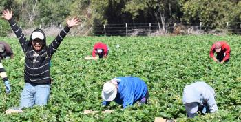 Remember Farm Workers At Your Labor Day Barbeque