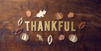 Happy Thanksgiving From Mike's Blog Round Up