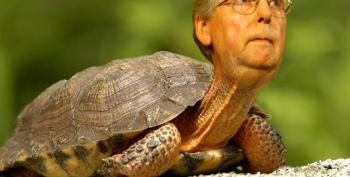 2018 Crookie Head In The Sand Award: Mitch McConnell
