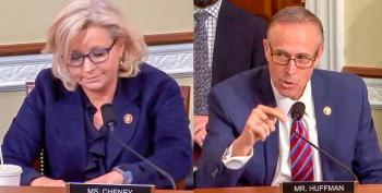Liz Cheney Called Out For Lying About Green New Deal