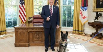 White House Stands Behind Its Story That Conan Is A Male Dog
