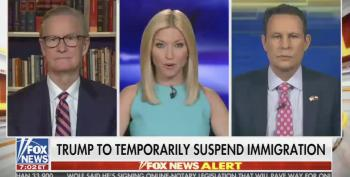 Fox Hosts On Trump's Immigration Ban: We Need Our Au Pairs!