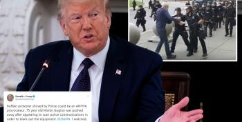 Trump Tweets Conspiracy Theory About Elderly Buffalo Protester Who Was Shoved To The Ground