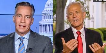 Peter Navarro Shamelessly Shills For Unproven Drug: 'Doctors' Opinions Are A Dime A Dozen'